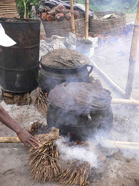 Cooking palm nuts to soften the nuts for oil extraction