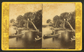 Palmettos, near Jacksonville, Fla, from Robert N. Dennis collection of stereoscopic views.png