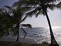 Panama Pacific Coast near Portobelo (3776823201).jpg