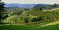 Panorama Reichenbach.jpg