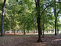 Parco ponente Cesenatico 03.jpg