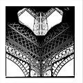 Paris Eiffel Tower (50927668).jpeg