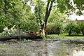 Park Sienkiewicza in Łódź after storm on July 20th, 2011, 06.jpg