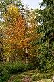 Parkansichten Queen-Auguste-Victoria-Park (Umkirch) jm54330 ji.jpg