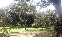 Parque ecologico paso coyol.jpg