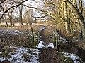 Path around Black Wood - geograph.org.uk - 1638266.jpg