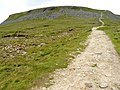 Path to the Summit of Ingleborough - geograph.org.uk - 1386230.jpg