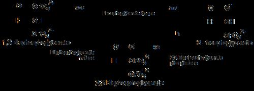 2,3-Bisphosphoglyceric acid - Wikipedia