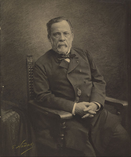 Paul Nadar (French - (Louis Pasteur) - Google Art Project.jpg