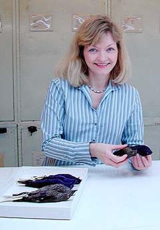 Birds of South Asia. The Ripley Guide - Pamela Rasmussen