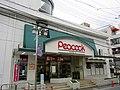 Peacock Store Iogi.jpg