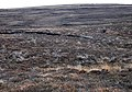 Peat cuttings, Hindera Fiold - geograph.org.uk - 1226351.jpg