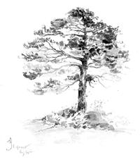 Category Drawing Site Ebook Com Landscape Or Landscapes Or Nature