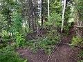 Permskiy r-n, Permskiy kray, Russia - panoramio (1230).jpg