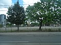 Pictures of the east side of Parliament, from a southbound TTC bus, 2016 07 09 (47).JPG - panoramio.jpg