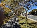 Pierre Lallement Bike Path, Roxbury MA.jpg
