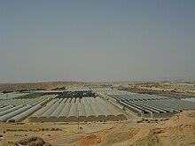 Một nhà kính giữa sa mạc ở Móshav Ein Yahav