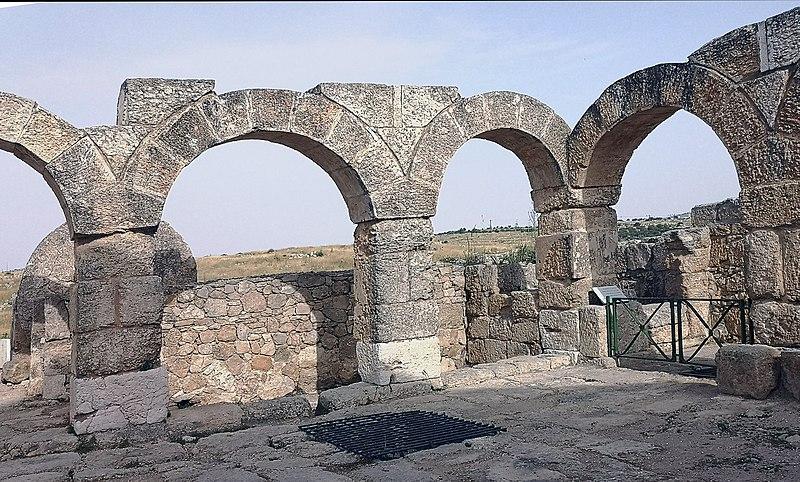 סוסיא הקדומה