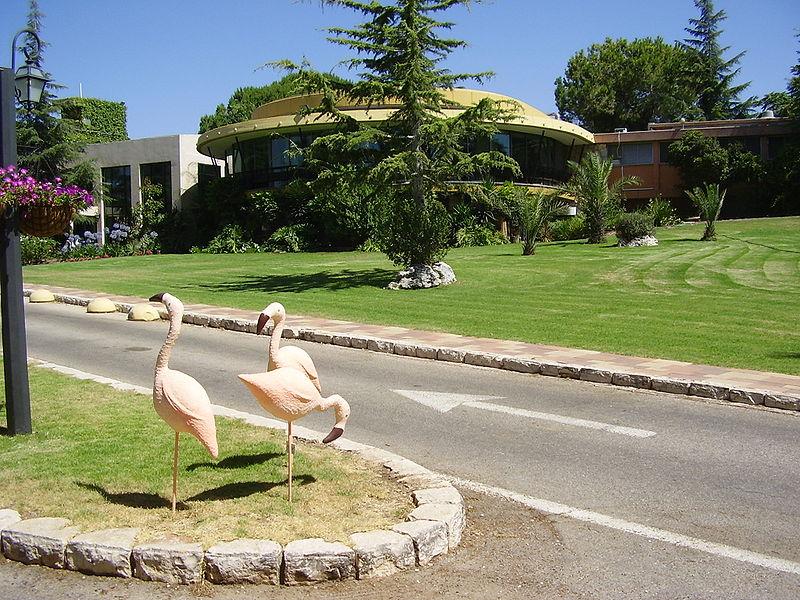 Maalot Tarshiha Israel  city pictures gallery : PikiWiki Israel 8782 hacienda forestview hotel in maalot ...