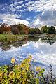 Pirita jõeoru maastikukaitseala. Tallinna Botaanikaaed.jpg