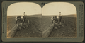 Plowing rich prairie soil with tractor, S. Dak, from Robert N. Dennis collection of stereoscopic views.png
