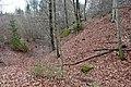 Poertschach Burgruine Leonstein suedoestlicher Halsgraben 24032014 778.jpg