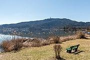 Poertschach Johannaweg Schilfrohr Blick Richtung Pyramidenkogel 08032017 6473.jpg