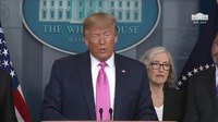 File:President Trump and Members of the Coronavirus Task Force Hold a News Conference.webmhd.webm