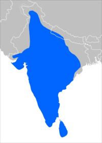 Prionailurus rubiginosus range map