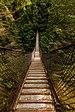 Puente colgante sobre el cañón Lynn, Vancouver, Canadá, 2017-08-14, DD 10.jpg