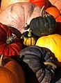 Pumpkin (6249865155).jpg