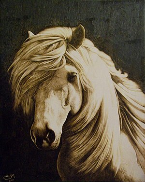 Pyrography - The White Horse, pyrography on poplar.