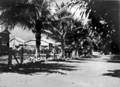 Queensland State Archives 917 Palm Island North Queensland c 1931.png