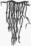 Representation of an Inca quipu