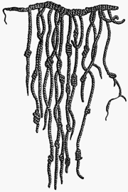 A quipu, a counting device used by the Inca.