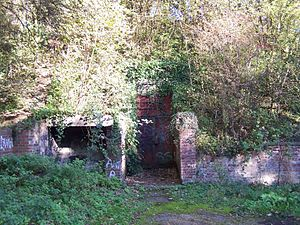 The overgrown entrance to No. 12 Group RAF Fighter Command's Second World War operations bunker. RAF Fighter Command Group 12 Watnall Bunker (4).jpg