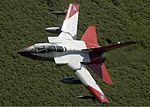 RAF Panavia Tornado GR1(T) Lofting-1.jpg