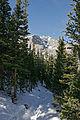 RMNP Ypsilon Lake Trail.jpg