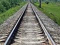 Railroad near Blizhnee Borisovo.jpg