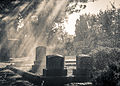 Rain in the Graveyard (16272788260).jpg