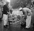 Ralley der Tulpen start Den Haag, Bestanddeelnr 905-0699.jpg