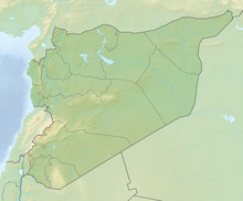 Relief Map: Syria