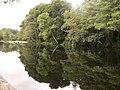 Remanso do Rio Miño pola Terra Chá - panoramio.jpg