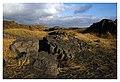 Reykjanes peninsula IV (15362858799).jpg
