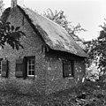 Rietgedekt huis van kooiker bij eendenkooi - Ameide - 20008387 - RCE.jpg
