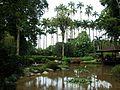Rio de Janeiro Botanical Garden (001).jpg