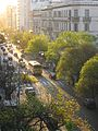 Rivadavia in the Golden Hour.jpg
