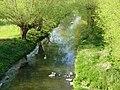 River Nene, Northampton - geograph.org.uk - 407380.jpg