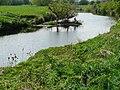 River Soar - geograph.org.uk - 1298504.jpg