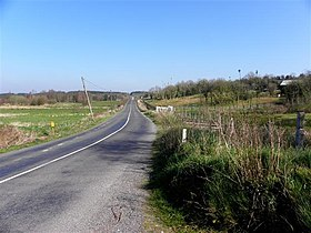 Road at Doogary (geograph 2870326).jpg